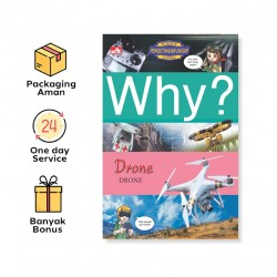 WHY? DRONE